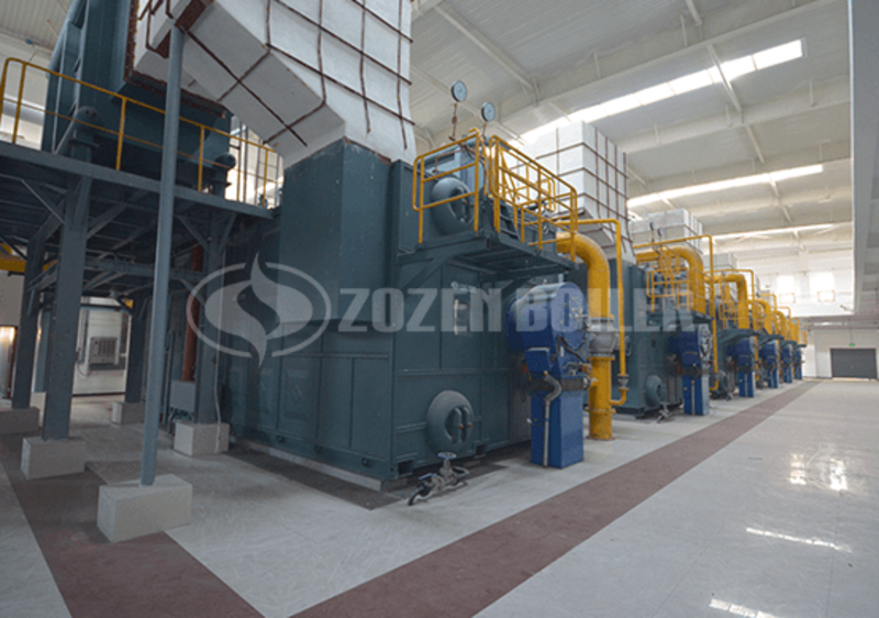 20 tph SZS condensing gas-fired steam boiler for paper factory