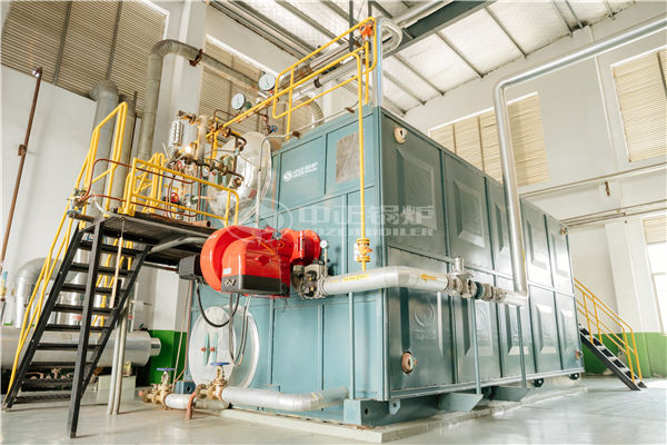 14 MW WNS condensing gas-fired boiler for university